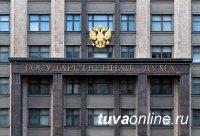 """Закон  о """"лесной амнистии""""  принят в первом чтении"""