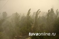 В Туве прогнозируют очень сильный ветер. Будьте осторожны!
