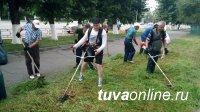 vk.com/vmeste_kyzyl: Молодежь Кызыла пока не включилась в борьбу с бурьяном