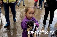 """В День города в парке обществом защиты животных """"Хатико"""" проведена акция """"Забери меня домой"""""""
