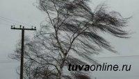 В Туве прогнозируют сильный ветер, дожди и град. Будьте осторожны!