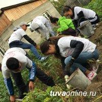 """Добрые Сердца Тувы"""" выкопали картошку 62-летней Зинаиде Доржулдаевне"""