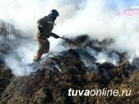 Из-за детской шалости в Бай-Тайгинском районе Тувы сгорело 4 тонны сена