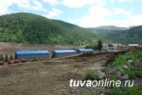 Правительство Тувы контролирует деятельность компании «Лунсин» в области охраны окружающей среды