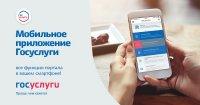 Кызыл: Как подать справку об отсутствии судимости через портал Госуслуг