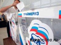 «Единая Россия» на предварительном голосовании задействует систему электронного дистанционного голосования