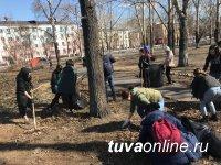 Молодежный сквер Кызыла очищен от мусора