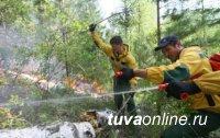 В Туве действует 1 лесной пожар на площади 2 га
