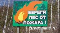 В борьбе с лесными пожарами Глава Тувы потребовал поставить на первый план усиление профилактических работ и тренировок