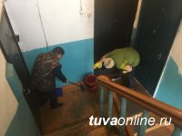 Кызылчане отмывают подъезды, красят ограждения, садят деревья во дворах многоквартирных домов