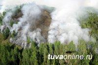 На землях лесного фонда Республики Тыва действует 1 лесной пожар