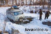 WWF России подвел итоги ежегодных зимних учетов ирбиса