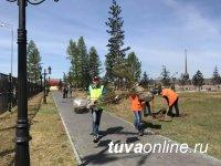 В Кызыле отмечены случаи продажи под маркой ФГУП «Минусинское» саженцев, не имеющих отношения к питомнику