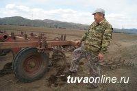 В Туве начинаются массовые весенне-полевые работы