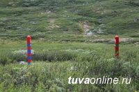 Скотокрады, угнавшие скот из Монголии, приговорены к 2 и 5 годам заключения