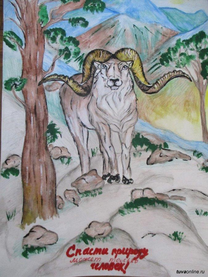 Картинки в защиту природы и животных, православные крещением открытки