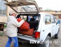 2200 многодетных и малообеспеченных семей Тувы посадили на своих участках «социальный картофель»