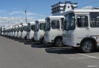 Комфортабельные автобусы ПАЗ начали выполнять рейсы в Сарыг-Сеп, Ак-Довурак, Эрзин