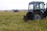 В Туве лучший по заготовке кормов муниципалитет получит трактор