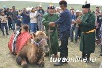 Тува: Мероприятия, посвященные Празднику животноводов – Наадыму-2018 (14-15 июля 2018 года)