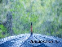 В Кызыле идут дожди. Несколько фактов о пользе дождя