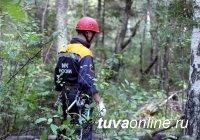 Полиция Тувы призывает грибников соблюдать меры безопасности