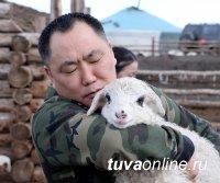 В овцеводстве и козоводстве Тувы будут субсидировать создание обособленных групп животных-производителей