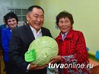 В Туве отметили республиканский праздник урожая