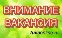 Центр занятости Кызыла: срочно требуются водители с категорией D