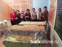 Шагаа: Почти 10000 пельменей и вареников слепили в Каа-Хемском кожууне Тувы для социально-незащищенных семей