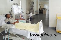 Тува участвует в 2019 году в 9 национальных проектах