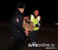 В Туве в 2018 году с пьяных водителей взыскано штрафов на более 32 млн. рублей
