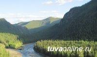 В Туве утвердили Стратегию развития лесного хозяйства до 2030 года