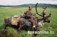 «Енисейской Сибири» около 400 тысяч лет. Северный олень пришел в Эвенкию из Тувы