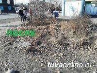 В Кызыле открыт сезон субботников