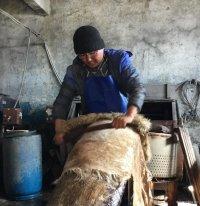 По темпам роста занятых в малом бизнесе лидируют Чечня (+4,7%) и Тува (+4%)