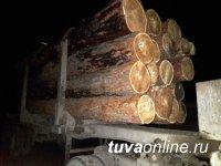 В Тандинском районе инспекторы ДПС выявили незаконную рубку деловой древесины