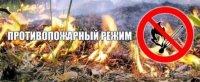 C 10 апреля на всей территории Тувы введен противопожарный режим