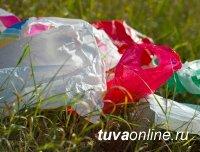 В России предлагается ввести запрет на пластик с 2025 года