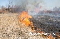 Глава Тувы предупредил об ответственности за сельхозпалы