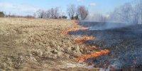 Мэрией Кызыла будут организованы рейды по профилактике пожаров
