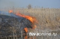 Глава Тувы призвал жителей республики пресекать случаи неосторожного обращения с огнем, включая сельхозпалы