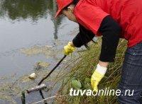 Самые активные семьи школ № 2, 4 и 7 Кызыла отправятся 27 апреля на «Экологическую рыбалку»