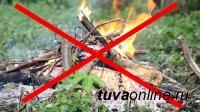 Особый противопожарный режим в Туве будет продлен до 21 мая