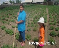 Власти Тувы помогут малообеспеченным семьям региона в занятиях огородничеством