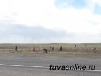 Жители Левобережных дач Кызыла провели субботник