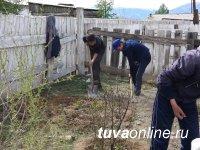 На пришкольных участках в Бай-Тайгинском кожууне Тувы кипит работа