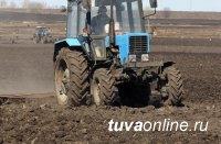 В Туве завершен сев зерновых