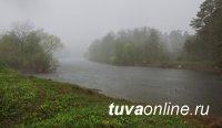 Уровень воды в Енисее в Туве составляет 418 см