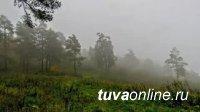 Дым от пожаров в Красноярском крае и Иркутской области достиг Тувы